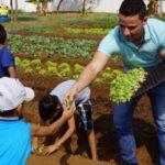 Campo Grande implementa hortas orgânicas em todas as suas escolas públicas