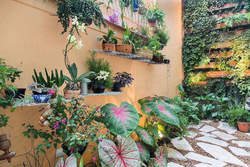 7 benefícios de ter um jardim vertical em casa