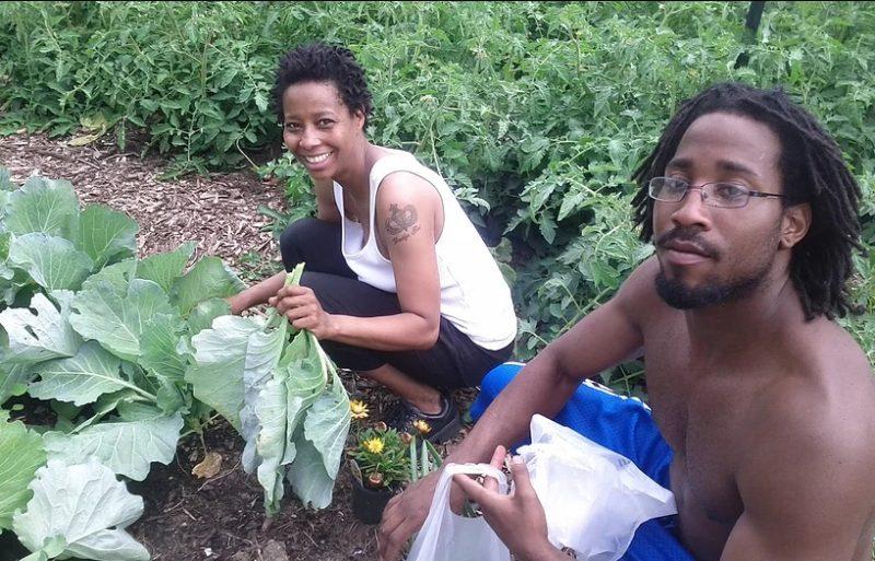 A horta comunitária que alimenta 2 mil famílias de graça