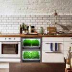 Do tamanho de um frigobar, nano-jardim permite que pessoas cultivem horta dentro da cozinha