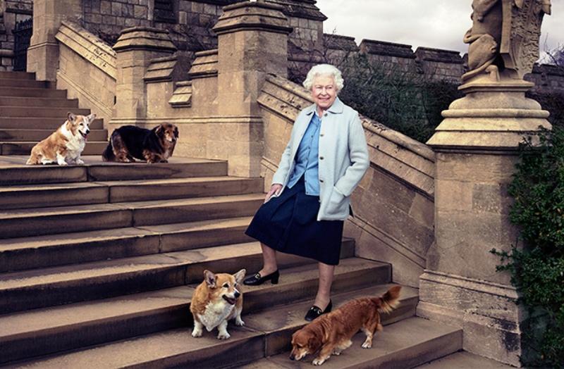 Rainha Elizabeth adota cachorro de funcionário que faleceu