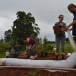 Procurando por ecovilas para conhecer? O aplicativo que mostra todas as comunidades sustentáveis do Brasil