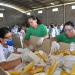 Conheça a lei que está garantindo que toneladas de lixo sejam recicladas no litoral de São Paulo