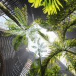 Arquitetos implementam floresta tropical com mais de 700 árvores no centro de Cingapura
