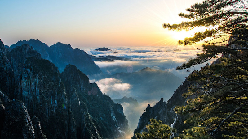 Contra poluição, China anuncia plantio de floresta do tamanho da Irlanda