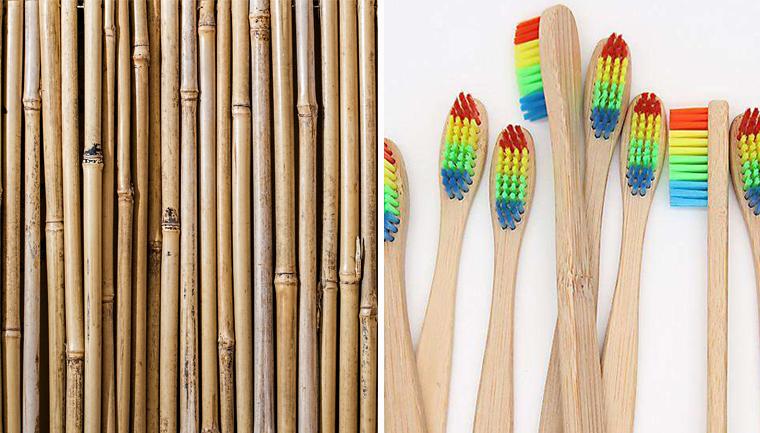 Guerra contra o plástico! A empresa que doa escovas de dentes feitas de bambu para qualquer interessado