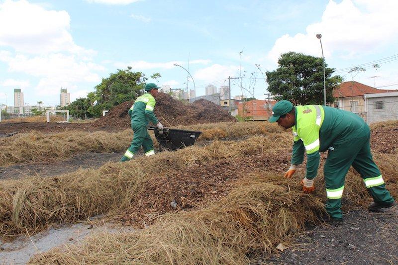São Paulo ganha pátio de compostagem – com capacidade de 2.880 toneladas por ano!