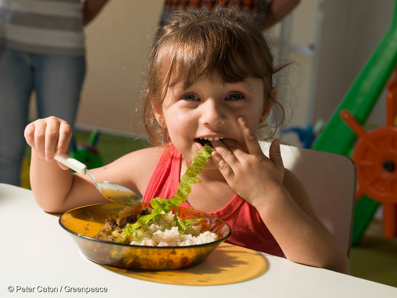 Children eat ecological food at school Escola de Educação Infantil São Pedro (or São Pedro Kindergarden), in the city of Guabiruba, state of Santa Catarina.