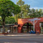 No Paraná, árvores digitais solares levam internet e sustentabilidade à população