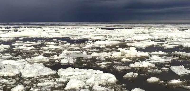 Os últimos cinco anos são os com maiores temperaturas lá no Ártico