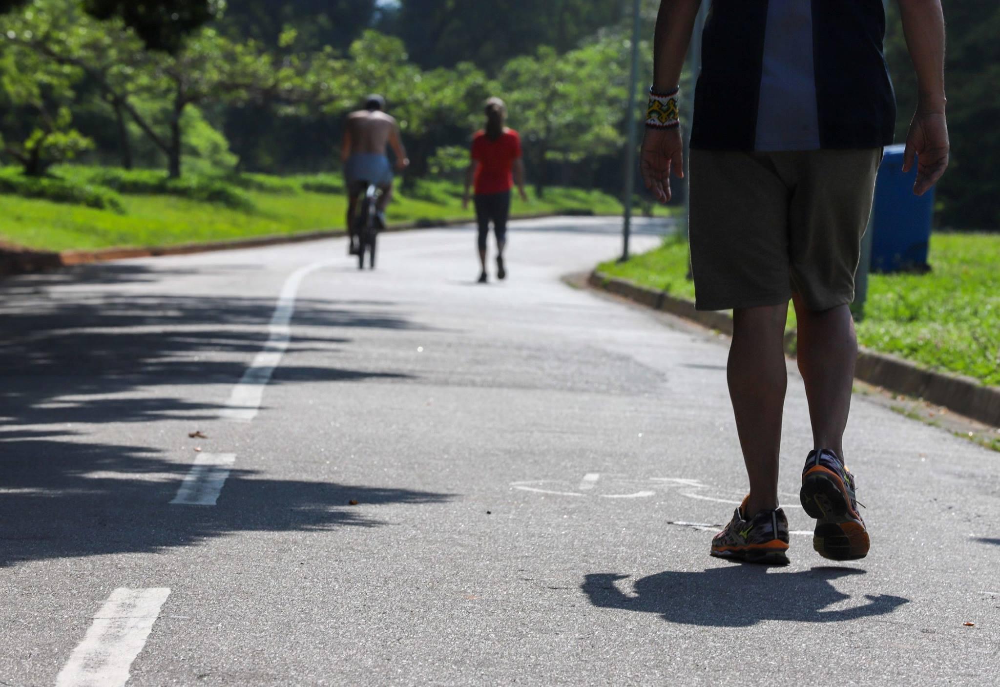 Conheça o parque (em SP) 11 vezes maior que o Ibirapuera