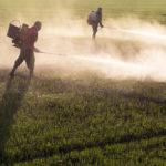 """""""Coquetel"""" com 27 agrotóxicos foi achado na água de 1 em cada 4 municípios – consulte o seu"""