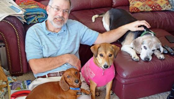 Idoso funda casa de repouso que abriga cães velhinhos abandonados pelos donos