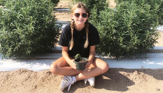 A menina de 13 anos que criou marca de óleo de maconha para ajudar pessoas doentes (como ela foi ajudada)
