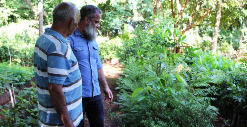 Anápolis recebe 6 mil mudas de frutos do Cerrado – e se torna o maior pomar urbano do bioma