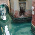 Canais de Veneza voltam a ter água cristalina após conter turismo de massa