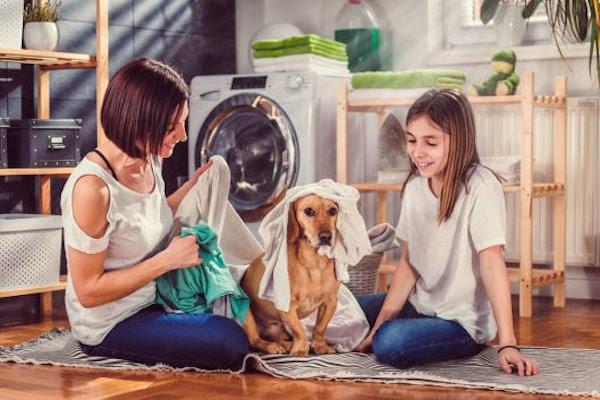 Conheça o lava-roupas vegano que auxilia na economia de água