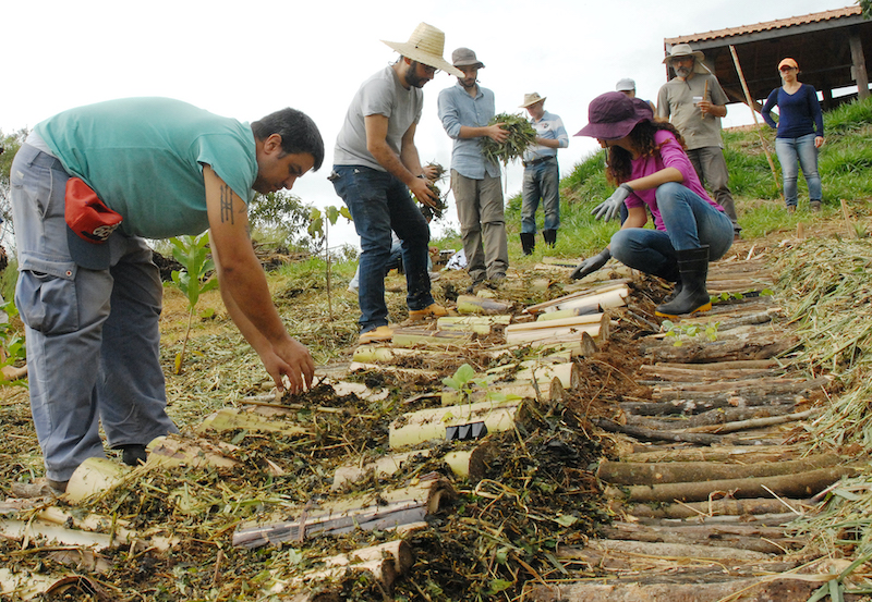 Curso de Permacultura (PDC) ensina nova forma de viver no mundo