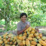 Invista em negócios sociais de impacto positivo na Amazônia – com rentabilidade de 12% ao ano