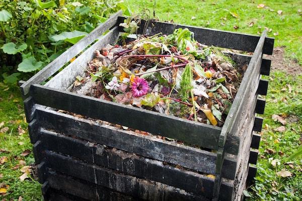 Compostagem: fazer do lixo orgânico um bom composto pode ser uma ótima atividade em família