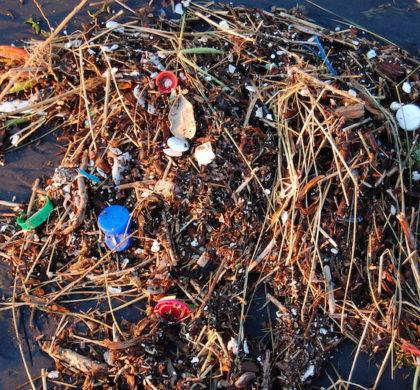 Estudo revela que quantidade de plástico nos oceanos pode aumentar quatro vezes até 2040