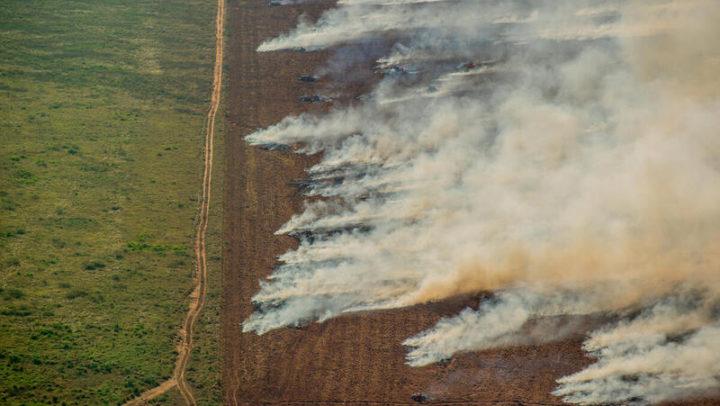 Amazônia registra recordes de focos de calor em julho