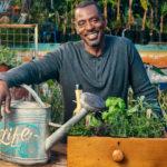 """Jardineiro """"gangster"""" espalha plantações de alimentos nas calçadas de Los Angeles"""