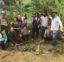Jornada de Agrofloresta: como plantar comida sem veneno e regenerar a Natureza