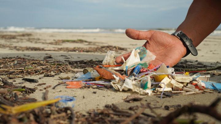 ONG quer retirar 15 toneladas de lixo das praias e oceanos – entenda como você pode ajudar!