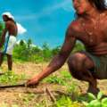 Cooperativa de indígenas que produz orgânicos no Cerrado vence prêmio da ONU de proteção à biodiversidade