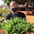 Agora é lei! Em Goiás, terrenos baldios são transformados em hortas comunitárias onde é proibido usar agrotóxicos